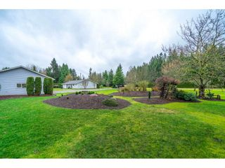 Photo 33: 4884 246A Street in Langley: Salmon River House for sale : MLS®# R2535071