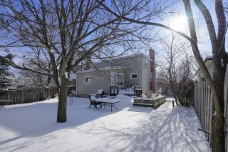 Photo 13: Amazing House For Rent walking distance to UOIT
