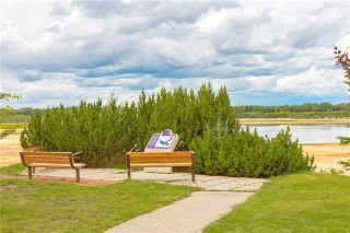 Photo 48: 6124 LEWIS Drive SW in Calgary: Lakeview Detached for sale : MLS®# C4293385