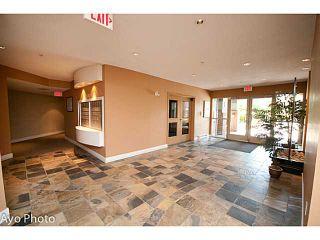 "Photo 2: 204 12020 207A Street in Maple Ridge: Northwest Maple Ridge Condo for sale in ""WESTBROOKE"" : MLS®# V1097465"
