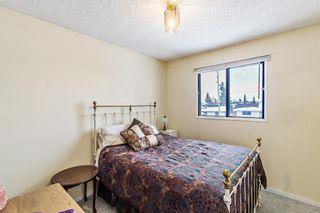 Photo 13: 151 Falsby Road NE in Calgary: Falconridge Semi Detached for sale : MLS®# A1061246