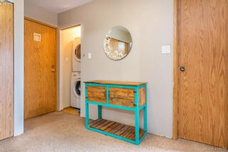 Photo 14: 201 290 Regina Ave in VICTORIA: SW Tillicum Condo for sale (Saanich West)  : MLS®# 829254