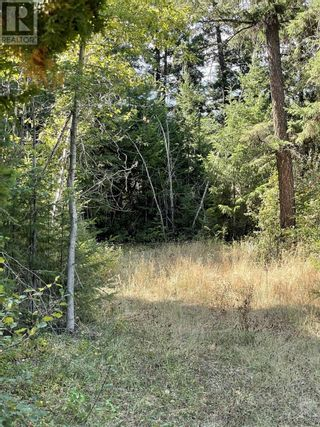 Photo 11: 1803 SOUTH LAKESIDE DRIVE in Williams Lake: Vacant Land for sale : MLS®# R2612495