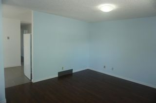 Photo 8: 925 Erin Woods Drive SE in Calgary: Erin Woods Detached for sale : MLS®# A1119483