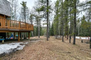 Photo 7: 231167 Forestry Way: Bragg Creek Detached for sale : MLS®# A1111697