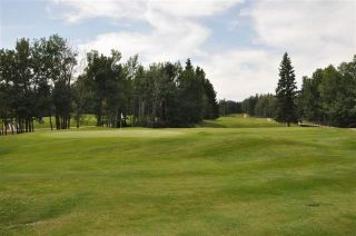 Photo 37: 157 CRYSTAL SPRINGS Drive: Rural Wetaskiwin County Rural Land/Vacant Lot for sale : MLS®# E4235152