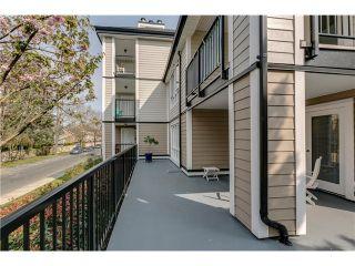 Photo 17: 114 7500 MINORU Blvd in Richmond: Brighouse South Home for sale ()  : MLS®# V1117536