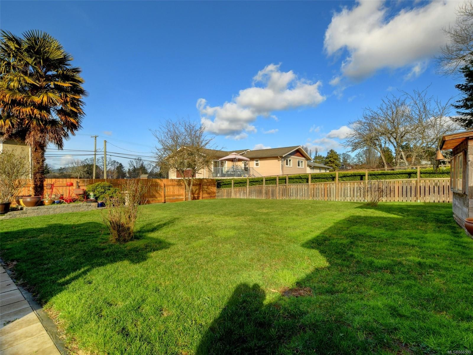Main Photo: 784 Daisy Ave in : SW Marigold House for sale (Saanich West)  : MLS®# 866590