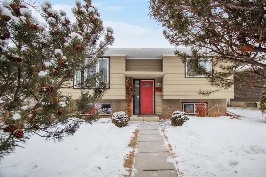 Main Photo: 4131 Doverview Drive SE in Calgary: Dover Detached for sale : MLS®# A1063702