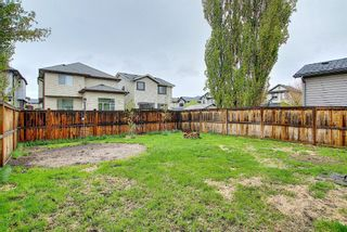 Photo 34: 56 Cranwell Lane SE in Calgary: Cranston Detached for sale : MLS®# A1111617