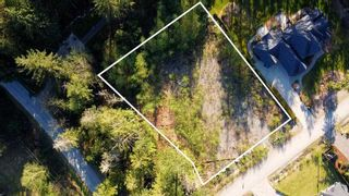 "Photo 6: 12905 246 Street in Maple Ridge: Websters Corners Land for sale in ""Allco Park"" : MLS®# R2576635"