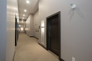 "Photo 4: 408 12367 224TH Street in Maple Ridge: West Central Condo for sale in ""Falcon House"" : MLS®# R2515780"