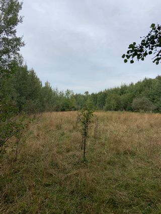 Photo 8: RR 275 Twp 482: Rural Leduc County Rural Land/Vacant Lot for sale : MLS®# E4261137