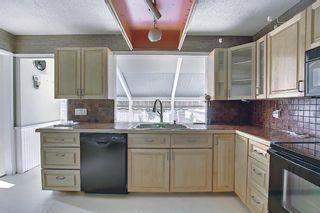 Photo 11: 37 Marbrooke Circle NE in Calgary: Marlborough Detached for sale : MLS®# A1134199