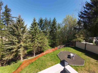 Photo 33: 31447 WINTON Avenue in Abbotsford: Poplar House for sale : MLS®# R2566181