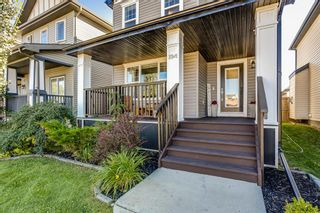 Photo 6: 64 Copperstone Gardens SE in Calgary: Copperfield Detached for sale : MLS®# A1145185
