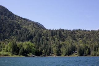 Photo 17: LOT 7 HARRISON River: Harrison Hot Springs House for sale : MLS®# R2562627