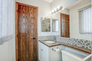 Photo 32: 87 Bermuda Close NW in Calgary: Beddington Heights Detached for sale : MLS®# A1073222