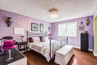 Photo 10: 20 Pineland Bay NE in Calgary: Pineridge Detached for sale : MLS®# A1108452