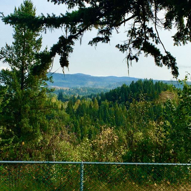 """Photo 37: Photos: 1150 PENTLAND Crescent in Quesnel: Quesnel - Town House for sale in """"UPLANDS"""" (Quesnel (Zone 28))  : MLS®# R2499670"""