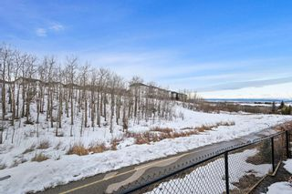 Photo 46: 182 Rockyspring Circle NW in Calgary: Rocky Ridge Residential for sale : MLS®# A1075850