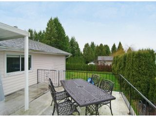 Photo 10: 3159 267A Street in Langley: Aldergrove Langley House for sale : MLS®# F1315905