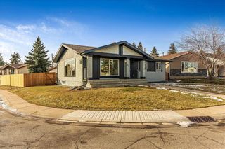 Photo 36: 72 MAITLAND Green NE in Calgary: Marlborough Park Detached for sale : MLS®# C4275960