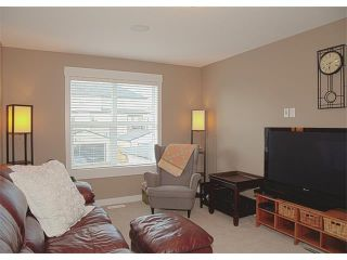 Photo 31: 185 Rainbow Falls Glen: Chestermere House for sale : MLS®# C4017404