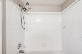 Photo 15: 3209 1620 70 Street SE in Calgary: Applewood Park Apartment for sale : MLS®# A1116068