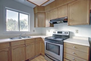 Photo 8:  in Edmonton: Zone 29 House for sale : MLS®# E4262869