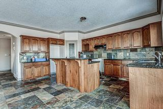 Photo 13: 36 ROYAL HIGHLAND Court NW in Calgary: Royal Oak Detached for sale : MLS®# A1029258