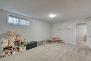 Photo 43: 358 Coventry Circle NE in Calgary: Coventry Hills Detached for sale : MLS®# A1091760