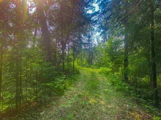 Photo 9: Lot 2 Fire Rd #2 McKenzie Portage RD in KENORA: Vacant Land for sale : MLS®# TB212223