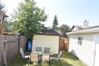 Photo 6: 199 Templeby Drive NE in Calgary: Temple Detached for sale : MLS®# A1140343