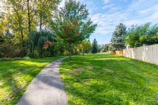 Photo 37: 45510 MEADOWBROOK Drive in Chilliwack: Chilliwack W Young-Well House for sale : MLS®# R2625283