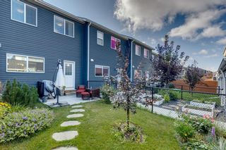 Photo 43: 919 Nolan Hill Boulevard NW in Calgary: Nolan Hill Row/Townhouse for sale : MLS®# A1141802