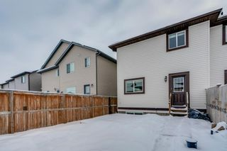 Photo 36: 65 Skyview Point Green NE in Calgary: Skyview Ranch Semi Detached for sale : MLS®# A1070707