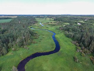 Photo 13: Pinebrook Block 1 Lot 2: Rural Thorhild County Rural Land/Vacant Lot for sale : MLS®# E4171871
