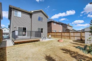 Photo 41: 1733 Baywater Drive SW: Airdrie Detached for sale : MLS®# A1095071