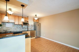 Photo 8: 703 2909 17 Avenue SW in Calgary: Killarney/Glengarry Apartment for sale : MLS®# A1089476