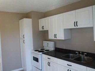 Photo 3: 530 MACKENZIE Avenue in : North Kamloops House for sale (Kamloops)  : MLS®# 127439