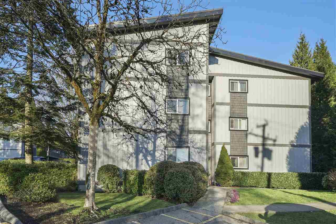 """Main Photo: 239 202 WESTHILL Place in Port Moody: College Park PM Condo for sale in """"Westhill Place"""" : MLS®# R2558066"""