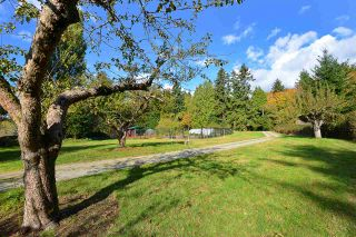 Photo 11: 4317 4315 SUNSHINE COAST Highway in Sechelt: Sechelt District House for sale (Sunshine Coast)  : MLS®# R2522429