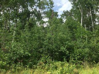 Photo 4: 24 Moon Shadow Road: Lake Manitoba Narrows Residential for sale (R19)  : MLS®# 202109658
