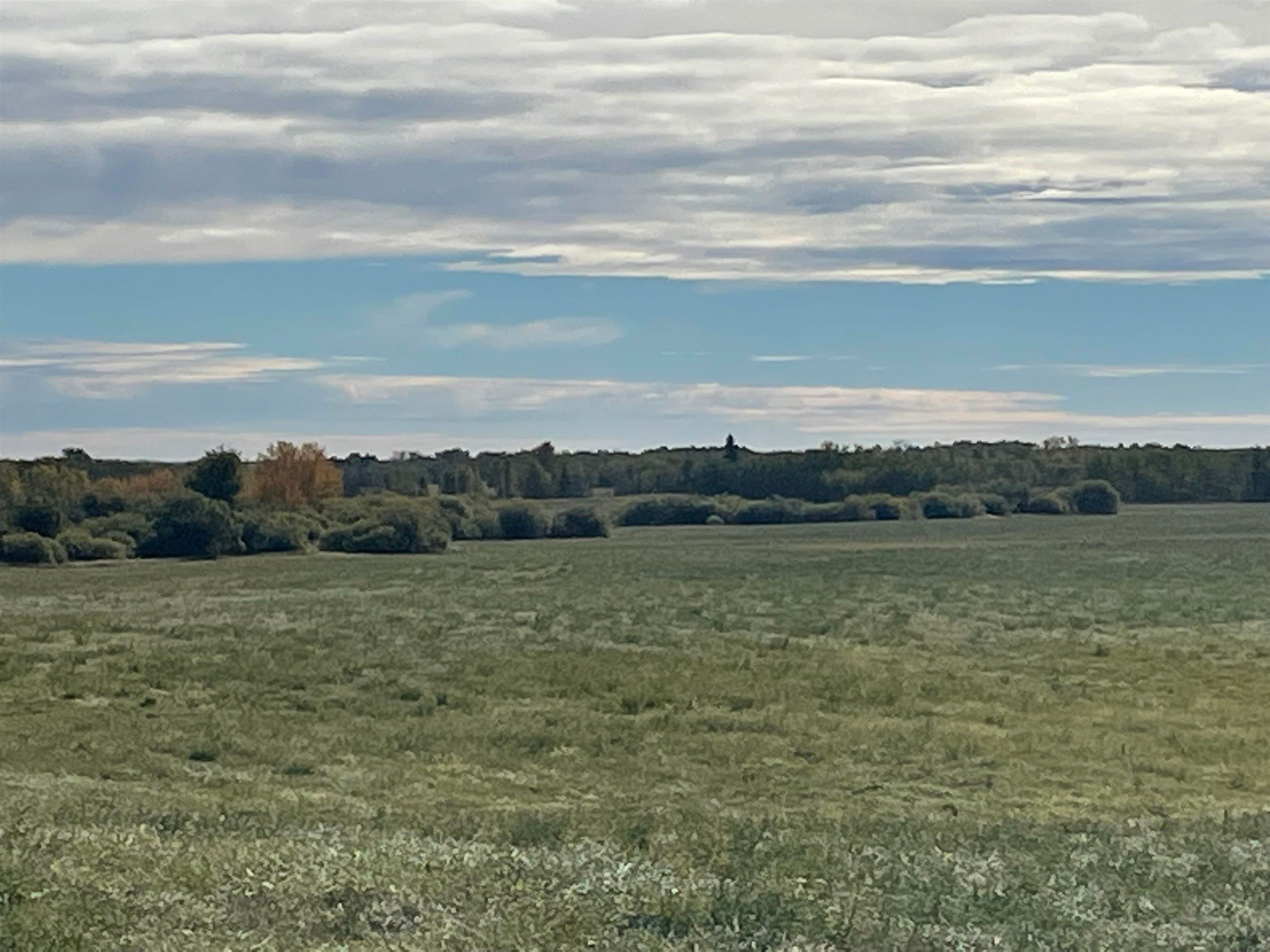 Main Photo: RR 230 Twp 492: Rural Leduc County Rural Land/Vacant Lot for sale : MLS®# E4263882