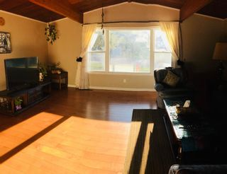Photo 31: 4931 Brisebois Drive NW in Calgary: Brentwood Detached for sale : MLS®# A1131084