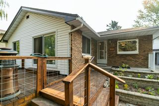 Main Photo: 20 Calandar Road NW in Calgary: Collingwood Detached for sale : MLS®# A1132819