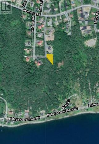 Photo 8: 18-24 Butts Road in Spaniard's Bay: Vacant Land for sale : MLS®# 1234275
