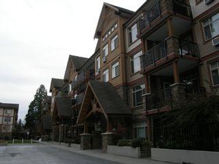 Photo 9: 205 12565 190A Street in CEDAR DOWNS: Home for sale : MLS®# r2207991