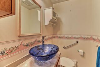 Photo 24: 167 Templevale Road NE in Calgary: Temple Semi Detached for sale : MLS®# A1140728